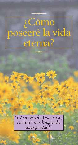 What Shall I Do to Inherit Eternal Life? - Spanish Tract