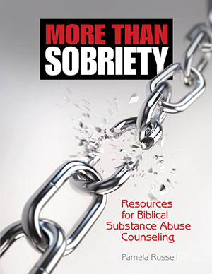 More than Sobriety: <br>Resources for Biblical Substance Abuse Counseling